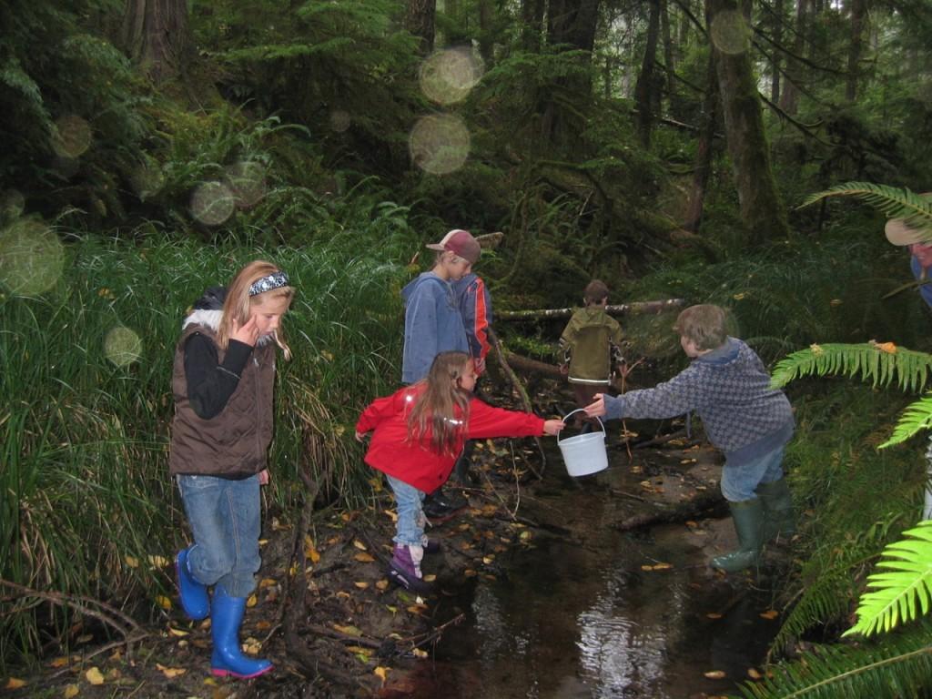 09_21_08 Stream Inventory #5 - Linnaea School Outing 032