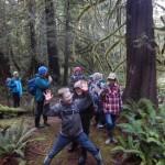 Cedar with dancers I
