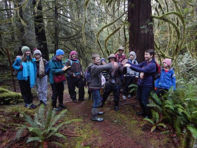 Cedar with dancers II
